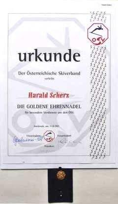 Goldene Ehrennadel des Österreichischen Skiverbandes